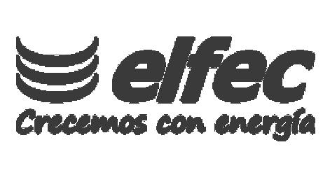 ELFEC